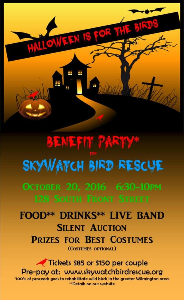 SkyWatch Halloween Poster For Emailing